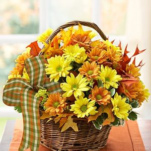 Fall Daisy Basket by Thomas Florist