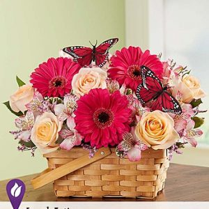 Bountiful Basket arrangement by Thomas Florist