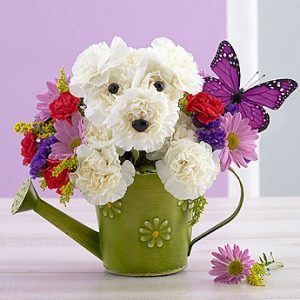 Playful Pup arrangement by Thomas Florist