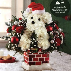 Santa Paws Flower Arrangement